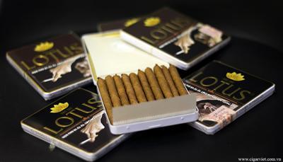Cigar Lotus Mini Hộp Sắt